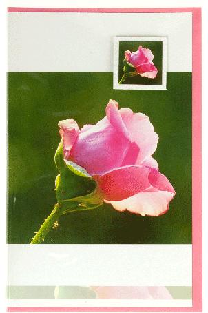Kaart (171) Roze Bloem