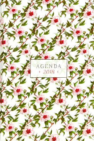 Luxe agenda 2018 Aquarellen