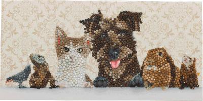 Crystal Card kit C6 dieren familie 11x22cm