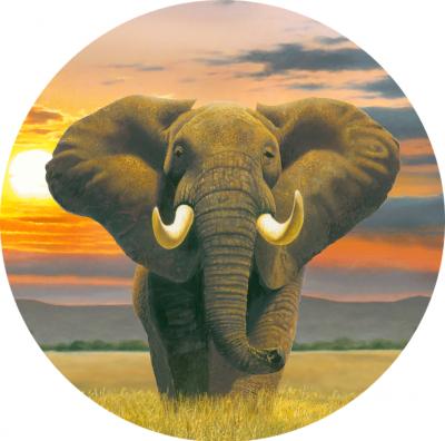 Crystal art clock elephant partial