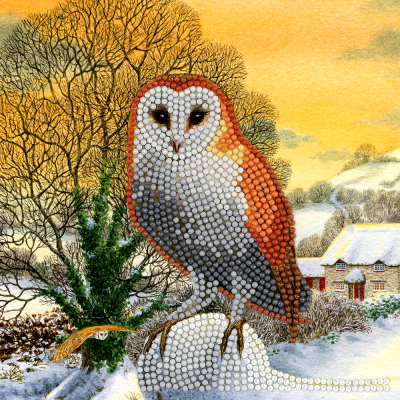 Crystal card kit XM60 winter owl partial painting