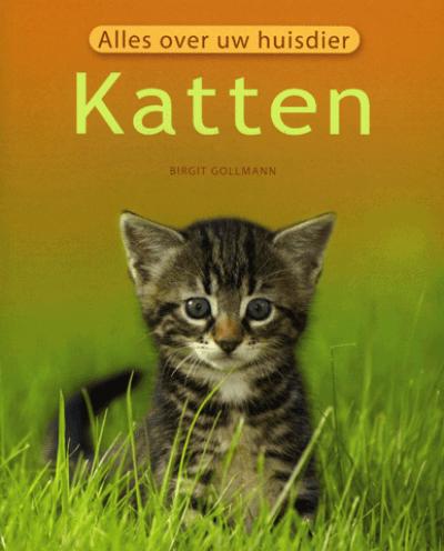 Alles over uw Huisdier Katten