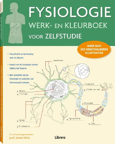 Fysiologie werk en kleurboek voor zelfstudie