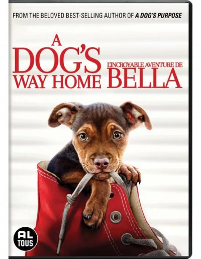 A dog's way home - DVD