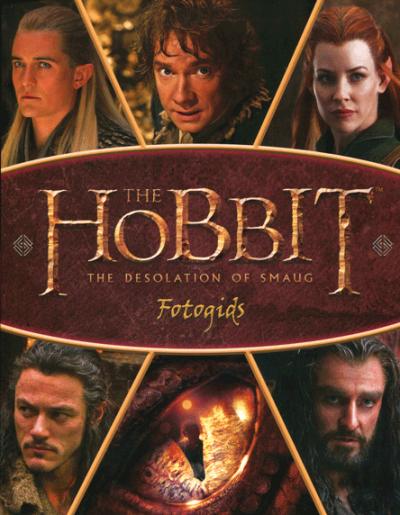 The Hobbit Desolation of Smaug (gids)