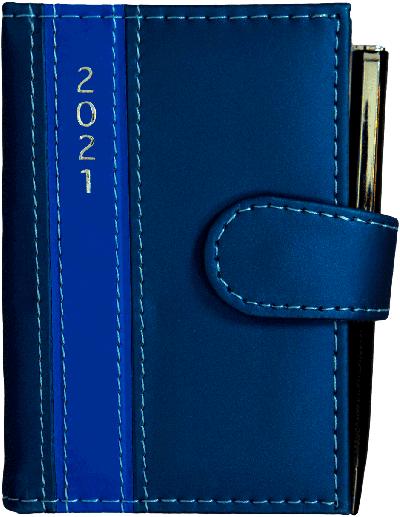 Dagplanner 2021 met pen blauw