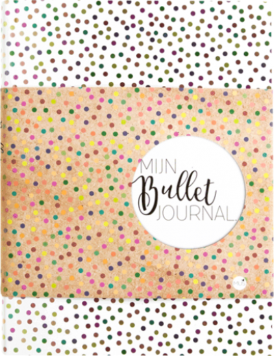 Mijn Bullet Journal Stip