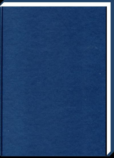 Dummie A4 Blauw