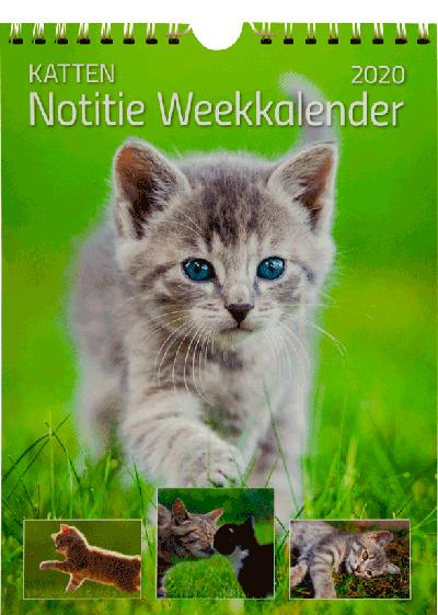 Weekkalender 2020 Katten