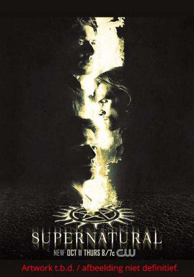 Supernatural - Seizoen 14 - DVD