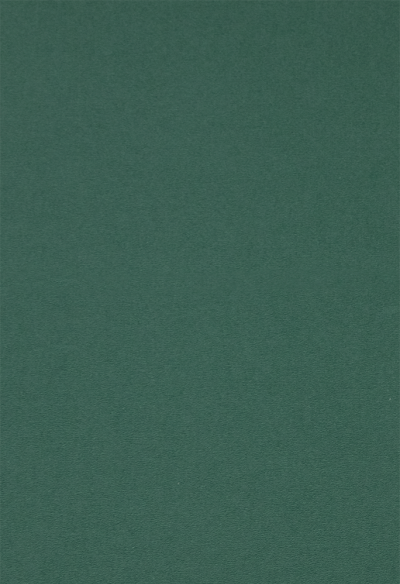 Linnenkarton satijn kerst groen A5 10 vel