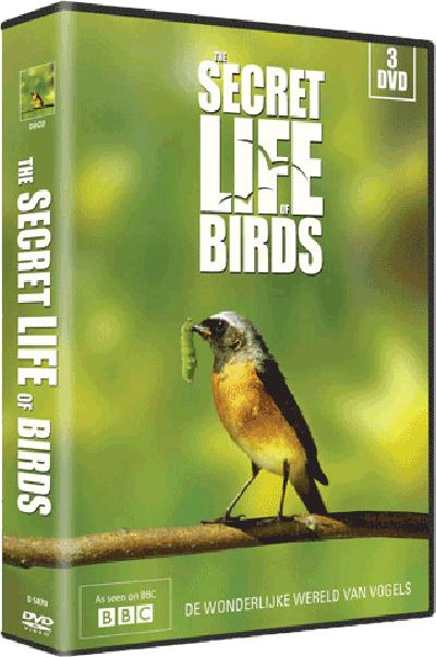 Secret life of birds - DVD