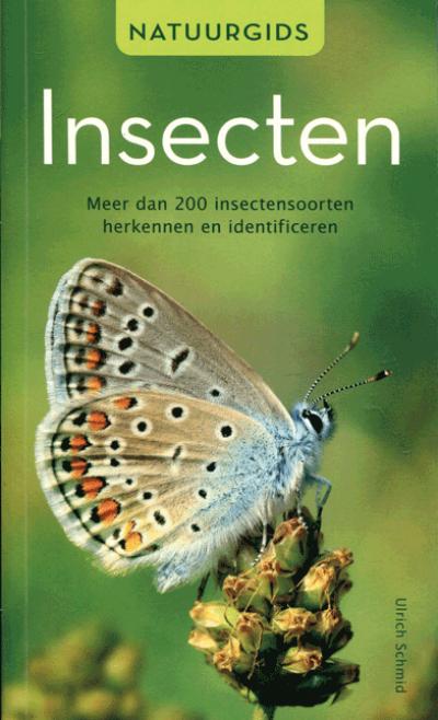 Natuurgids insecten