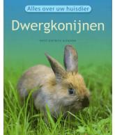 Alles over uw huisdier: Dwergkonijn