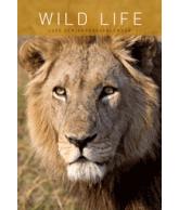 Verjaardagskalender Wildlife