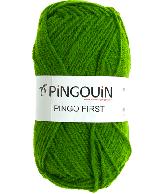 PINGO FIRST GAZON
