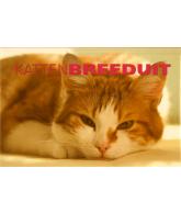 Katten Breeduit