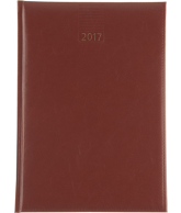 WT A5 2017 BRUIN NR 203 (weekagenda)