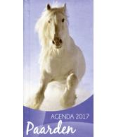 Weekagenda 2017: Paarden