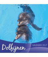 Kalender 2017 - Dolfijnen