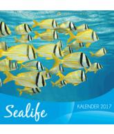 Kalender 2017 - Sealife