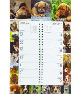 Omlegweek kalender 2017 Lovely Dogs