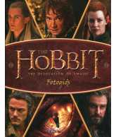 The Hobbit Desolation of Smaug (gids)