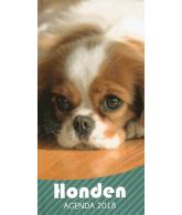 Agenda 2018: Honden