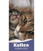 Agenda 2018: Katten