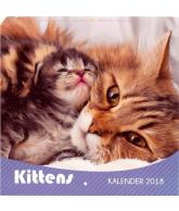 Kalender 2018 katten