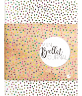 Mijn Bullet Journal Stip
