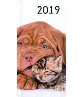 Agenda 2019: Kittens en puppy's