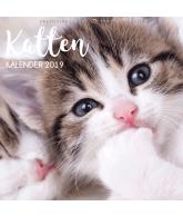 Kalender 2019: Katten