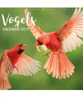 Kalender 2019: Vogels