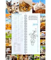 Omlegweek 2019 Lovely Cats (4)