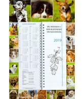 Omlegweek 2019 Lovely Dogs