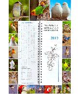 Omlegweek 2019 Lovely Birds
