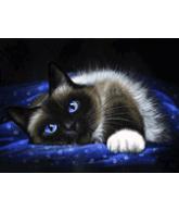 Diamond painting liggende kat 40x30cm