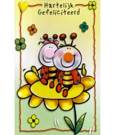 Kaart Neus Hartelijk Gefeliciteerd Lieveheersbeestjes op bloem, wenskaart met 3D neus