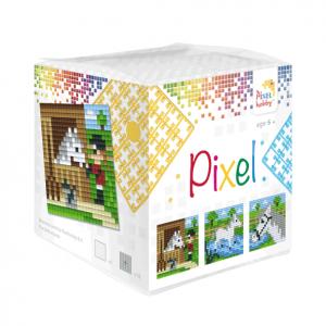 Pixelhobby Pixel kubus paarden