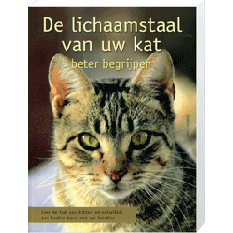 Lichaamstaal van uw kat beter begrijpen