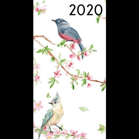 Agenda 2020: Vogels