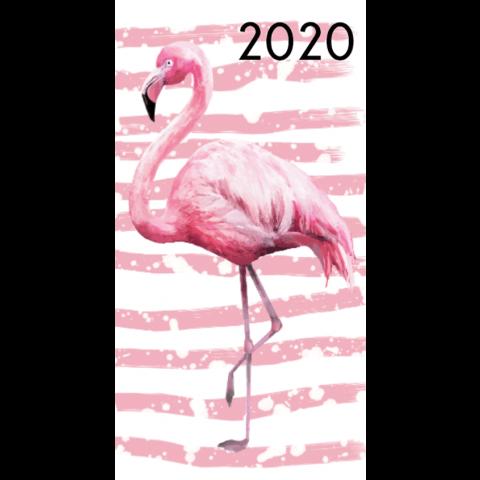 Agenda 2020: Flamingo's