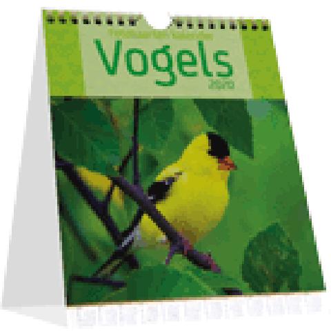 Bureaukalender 2020 vogels
