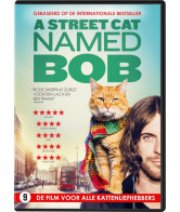 Street cat named Bob